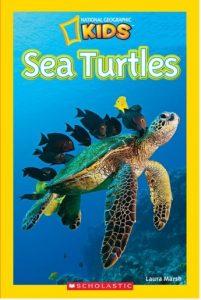 National Geographics - Sea Turtles